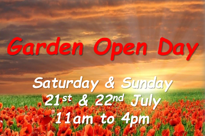 Badger Corner Garden Open Day